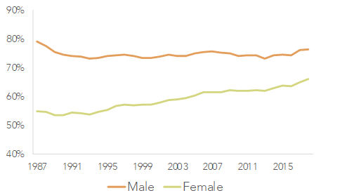 labour force participation by gender