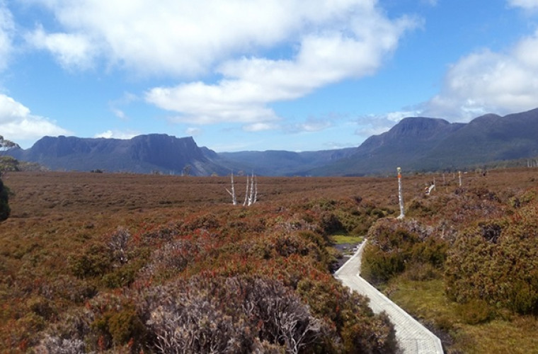 Cradle Mtn–Lake St Clair National Park