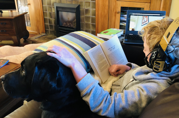 Fletcher learns at home with Jack the Labrador